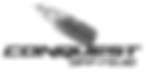 conquest auto logo.png