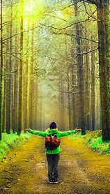 world-green woods.jpg