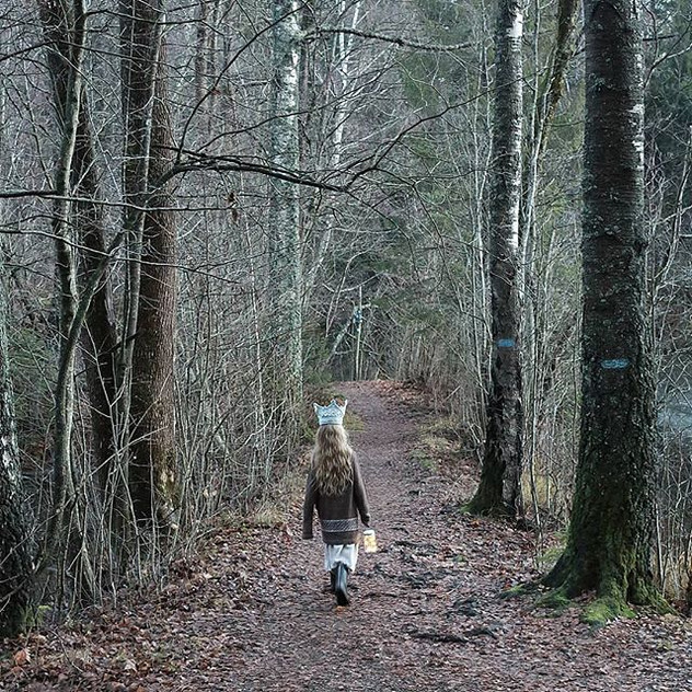 THE LITTLE PRINCESS OF THE WOODS Fairytale