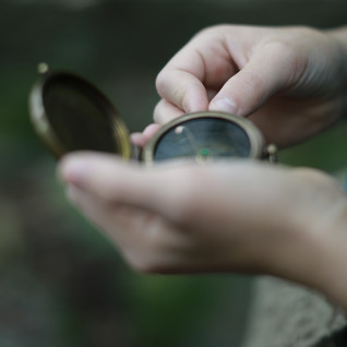 Compass. Find your way into the forests of mysteries and adventure.