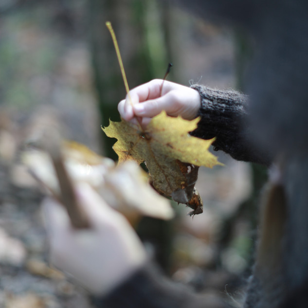 Back to nature. Little explorers. Sustainable kids fashion. Handmade with love, by you.