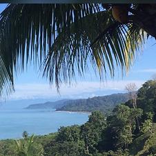 coastal PNG.png