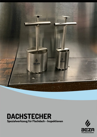Dachstecher VS DD!!!.jpg