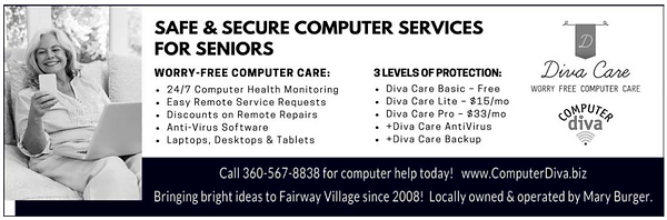 Computer Diva Ad.png