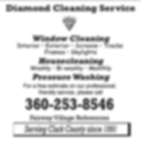 Diamond Cleaning Service Ad.png