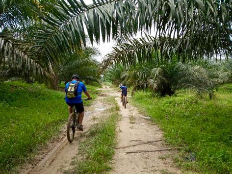 KLMBH #290 Bukit Tagar (28/04/2019) – Short Ride Report