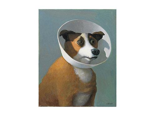 """Pigmentdruck: """"Kranker Hund"""" von Michael Sowa"""
