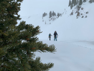 SNOWYTELLING- Reflections on Writing About Snow and Avalanches