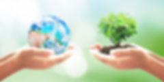 ecología-e1551739090805.jpg