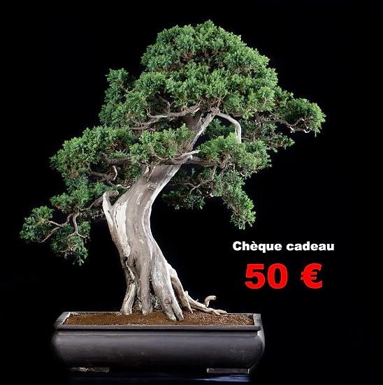 CHEQUE CADEAU de 50 €