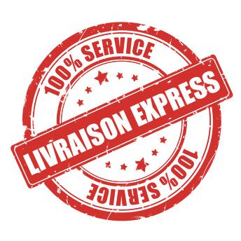 LIVRAISON EXPRESS PARIS