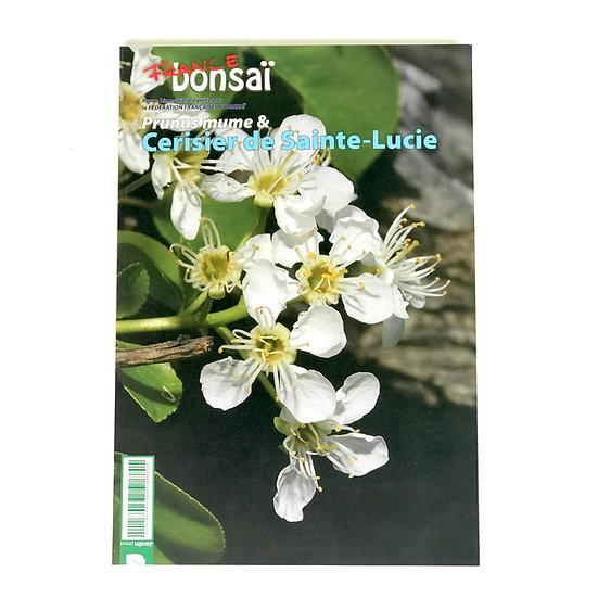 Cerisier de Sainte-Lucie - 125 pages en français