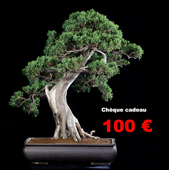 CHEQUE CADEAU de 100 €