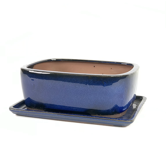 22 x 17 x 8 cm Bleu Inclus Soucoupe