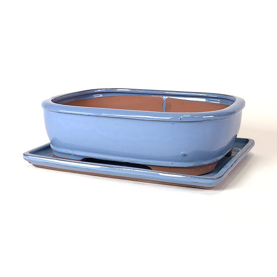 26 x 21 x 8 cm Bleu clair Inclus soucoupe