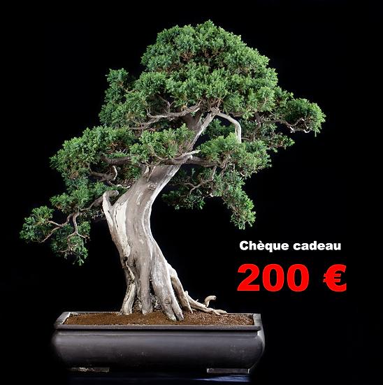 CHEQUE CADEAU de 200 €