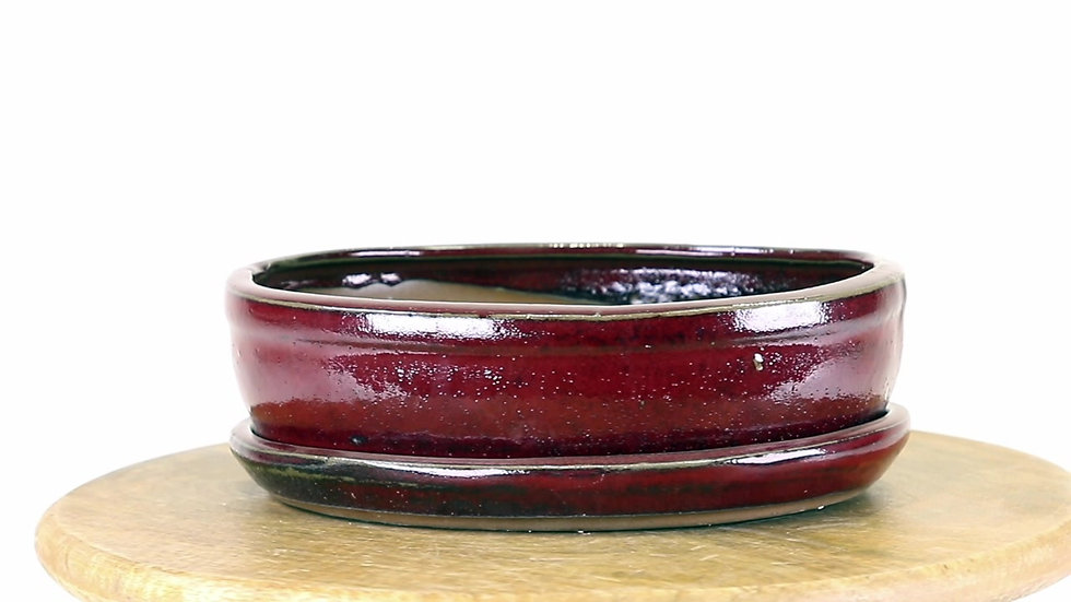 21 x 16 x 6 cm rouge inclus soucoupe