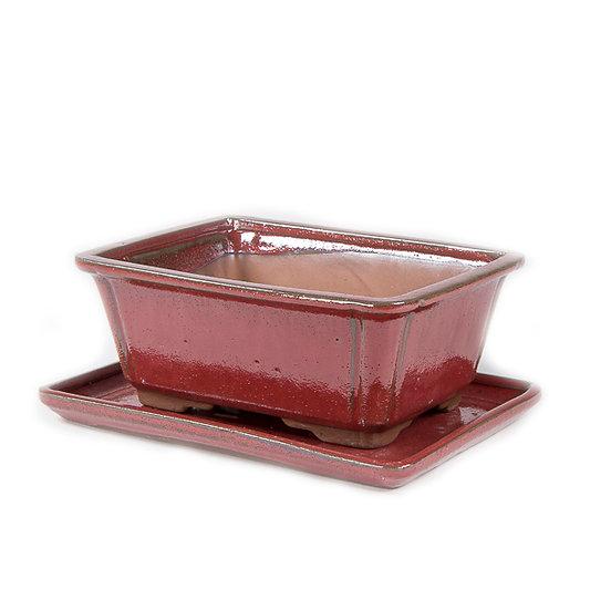 21 x 16 x 9 cm Rouge Inclus soucoupe