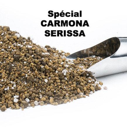 Substrat spécial CARMONA ou SERISSA 2; 4; 6; 8 ou 10 litres
