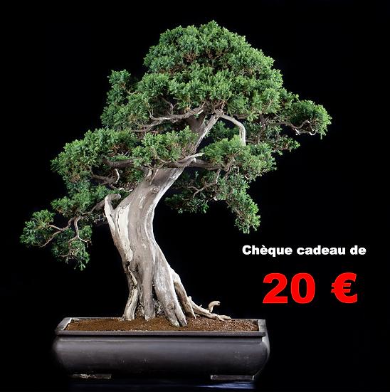 CHEQUE CADEAU de 20 €