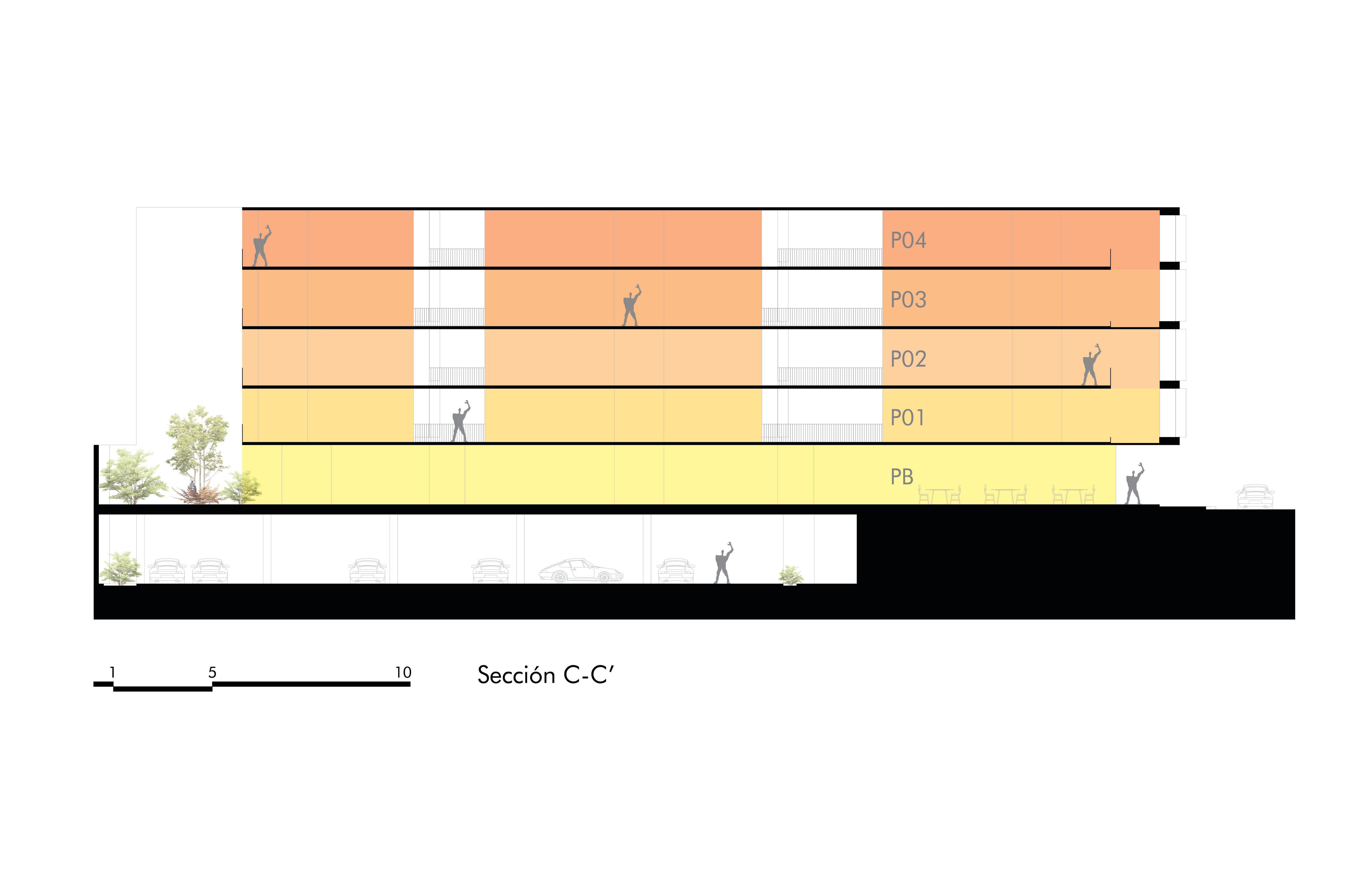 +10 SECCION LONGITUDINAL C-C'