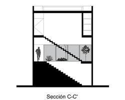 SECCIÓN C-C'