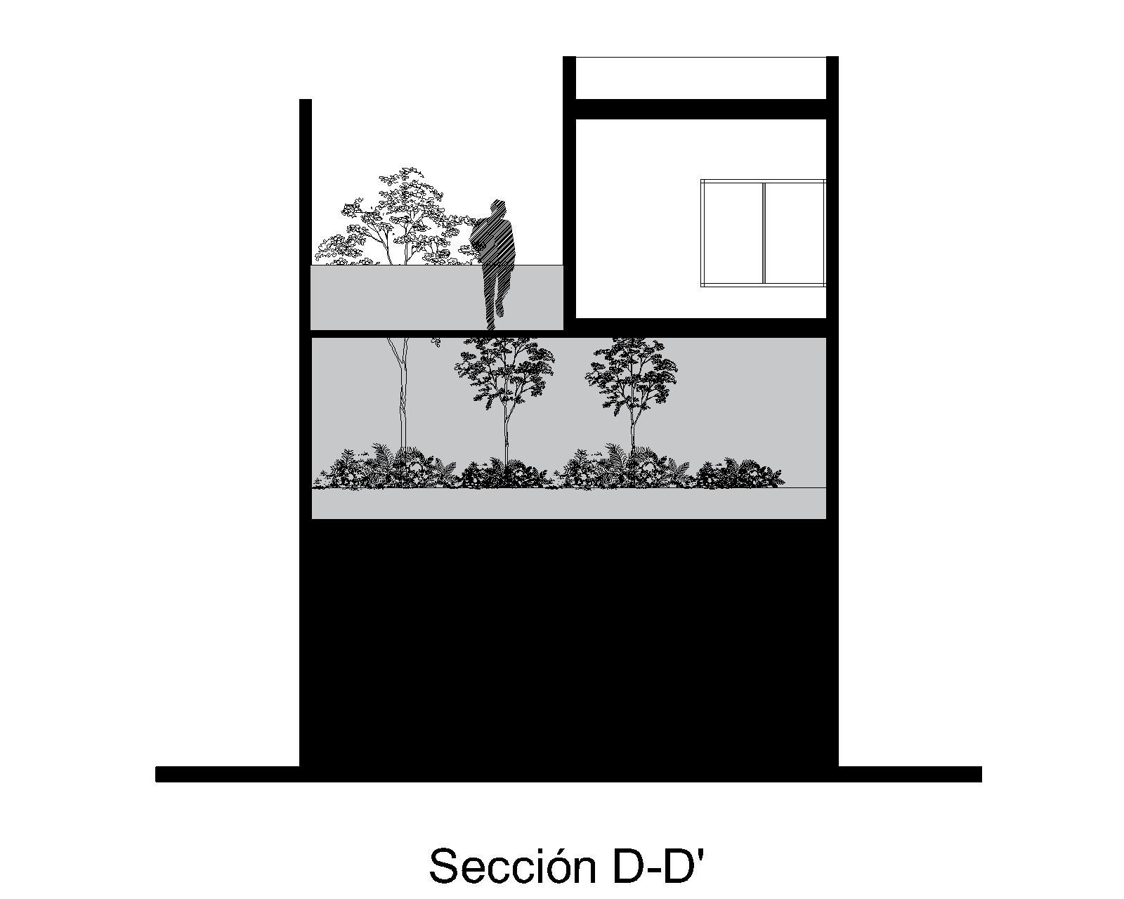 SECCIÓN D-D'