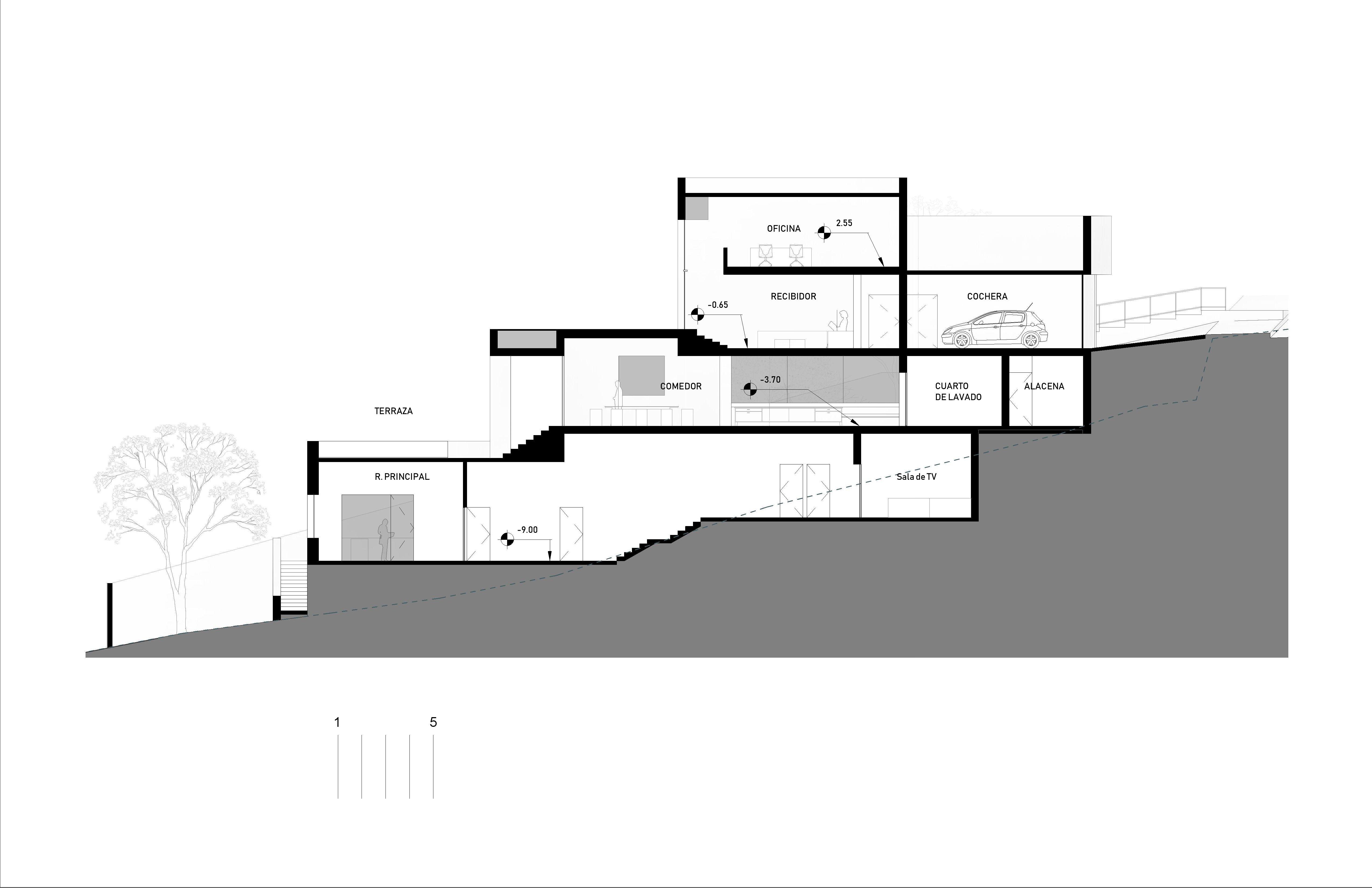 SECCIÓN- Nivel -2_2