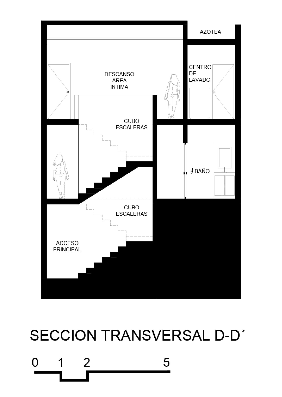 SECCION D