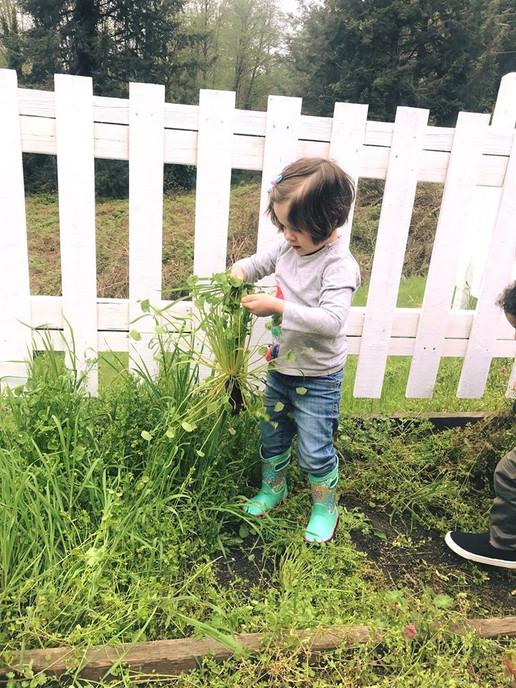 CASA- Gardening Girl.jpg