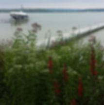 Shoreline erosion control_edited.jpg