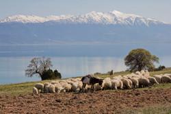 Lake Egirdir, Turkey