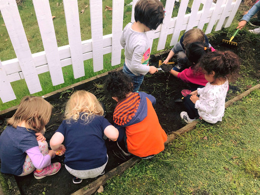 CASA- Gardening together 2.jpg