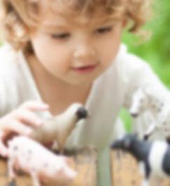 CASA- Website Image 3.jpg