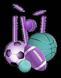 multi sports logo copy.png