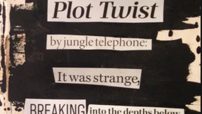'Found Poetry' Activity