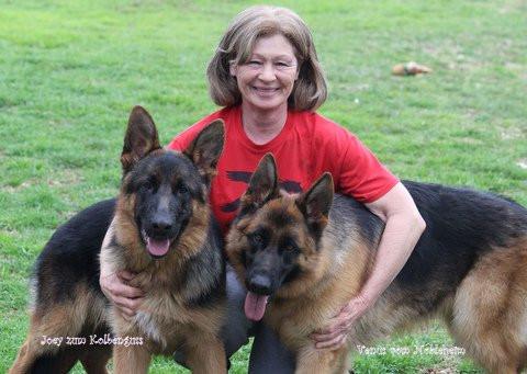 Nobleheim German Shepherds: Texas AKC German Shepherds