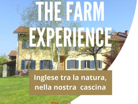 ⭐️ The Farm Experience