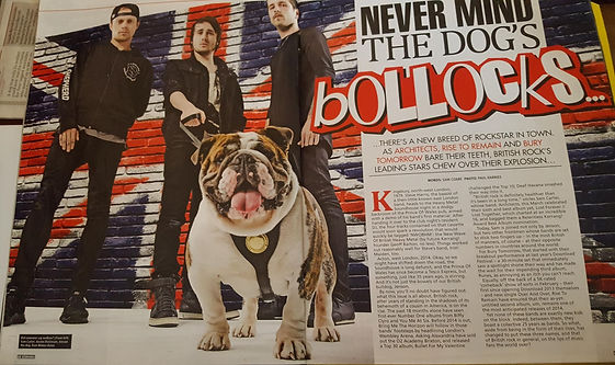 British Bulldog Jenson featured in Kerrang Magazine