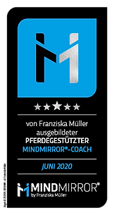 mindmirror.siegel.2020.06-web.png