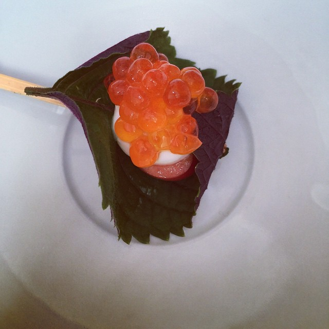 Instagram - Ikura, honey yogurt, gochujan, Brooks cherry, red shiso