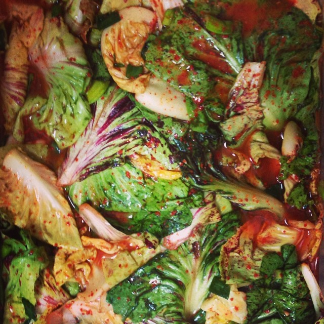 Instagram - Castelfranco chicory kimchee
