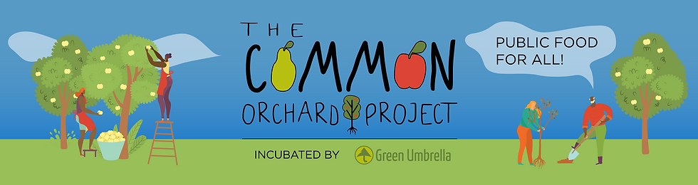 CommonOrchard_Banners_Website Banner WA.