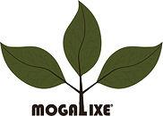Mogalixe Eco House Logo vT1.jpg