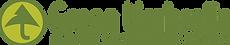 Green Umbrella Universal Logo.png