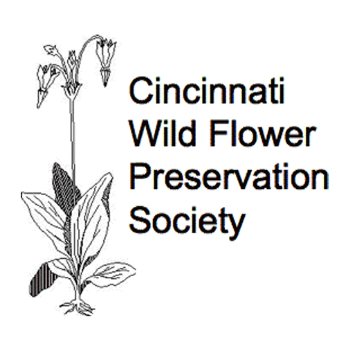 Cincy Wildflower logo RESIZE.png