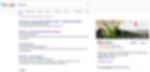 Blue Zoo Google