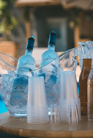 Grey Goose Bottle Service by the pool