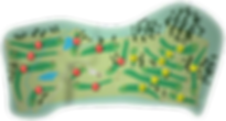 lisheen_springs_layout.png