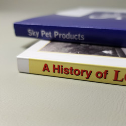Perfectbound book